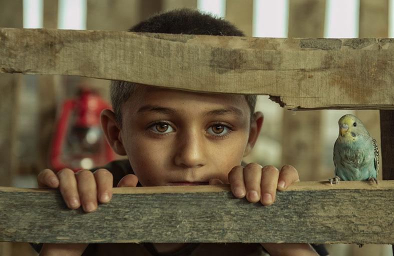العراق يحصد جائزة الأسبوع الثالث من مسابقة إكسبوجر العالمية #صور_من_المنزل