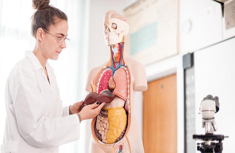 ثلاثة أعراض تشير إلى تلف الكبد «الدائم»