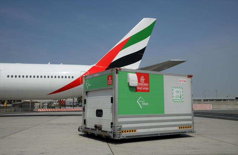 بطائرات إضافية لنقل المنتجات سريعة التلف والأدوية خلال شهر مارس