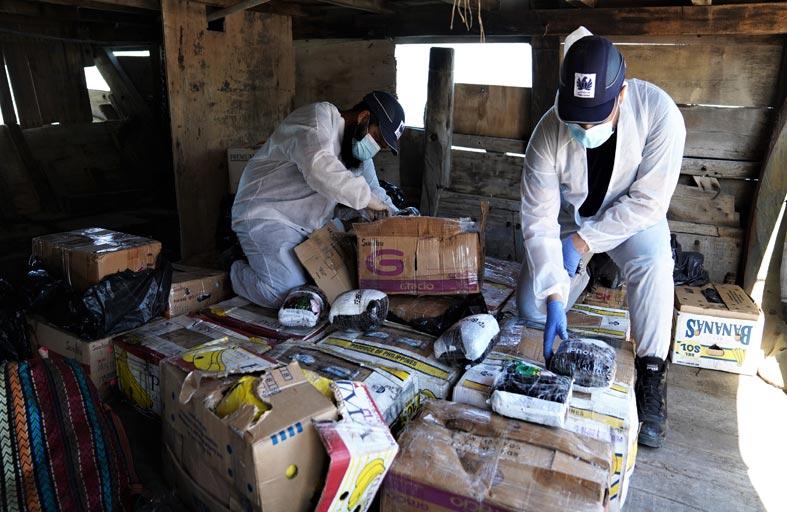 جمارك دبي تتوج حملة «وطن آمن» بضبط 662 كيلو جراما من المواد المخدرة