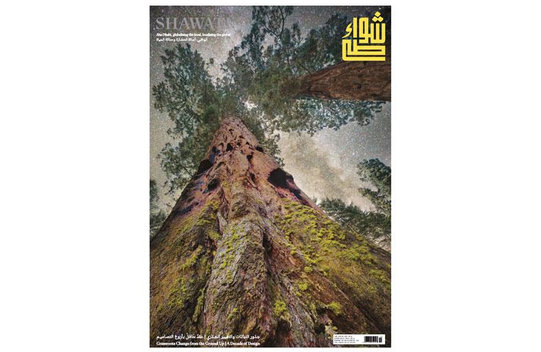 «مجلة شواطئ» تصدر عددها الـ 53