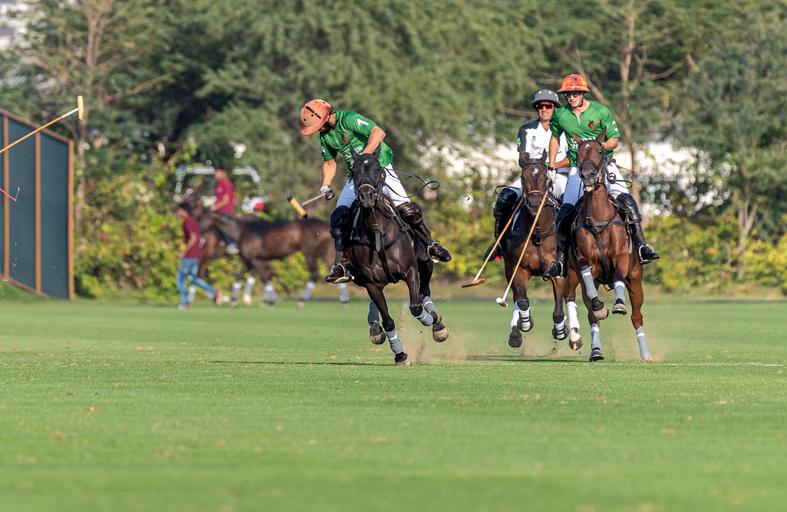 فريقا الحبتور مع هيكست ومهرة مع البوابات الخضراء في افتتاح كأس الهالوين