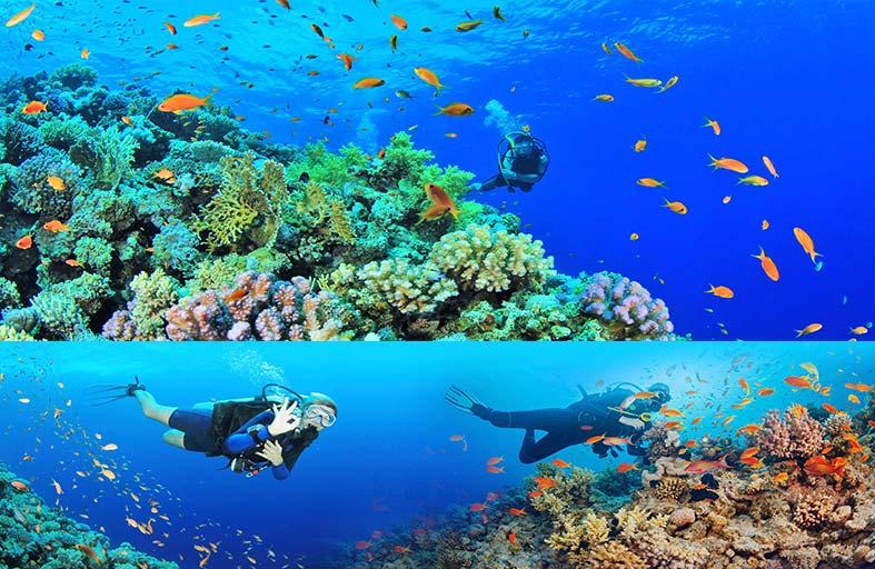 وزارة السياحية الفلبينية تستضيف معرض دايف ريسورت ترافل الدولي في 7 سبتمبر المقبل