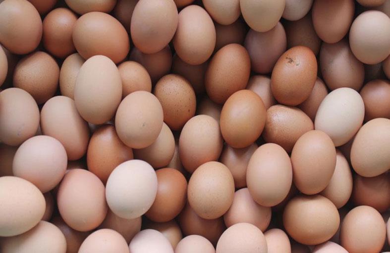 أكل 42 بيضة فمات
