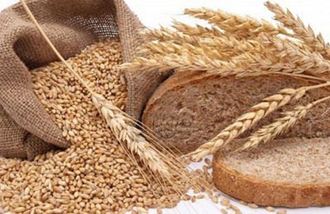 حساسية القمح... مرتبط بزمن الولادة