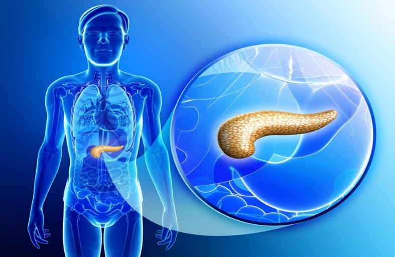 مقاربة علاجية مزدوجة واعدة لسرطان البنكرياس