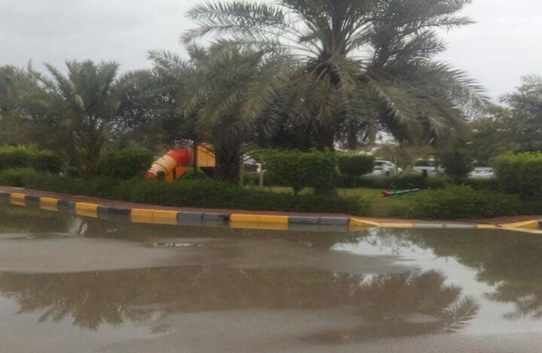 أمطار الخير تهطل على مدينة زايد ودلما