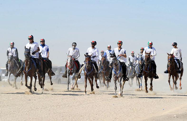 اليوم انطلاق احتفالية سباق كأس رئيس الدولة للقدرة في قرية بوذيب لنادي تراث الإمارت بجوائز 2 مليون درهم