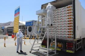 مفتشو جمارك دبي يعملون على مدار الساعة لتسهيل مرور البضائع
