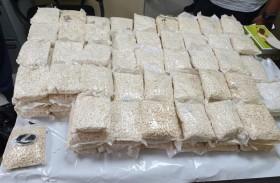علي النيادي: الهيئة ودوائر الجمارك المحلية أنجزت 4451 ضبطية مخدرات في 2019