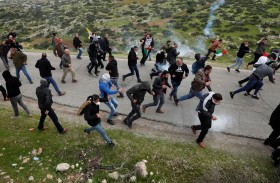 نشطاء يكافحون لإبقاء غور الأردن بيد الفلسطينيين