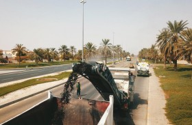 183 مليون درهم لتطوير دواري عشارج والمرخانية في العين
