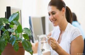 دراسة تشكك بجدوى النباتات المنزلية في تنقية الهواء