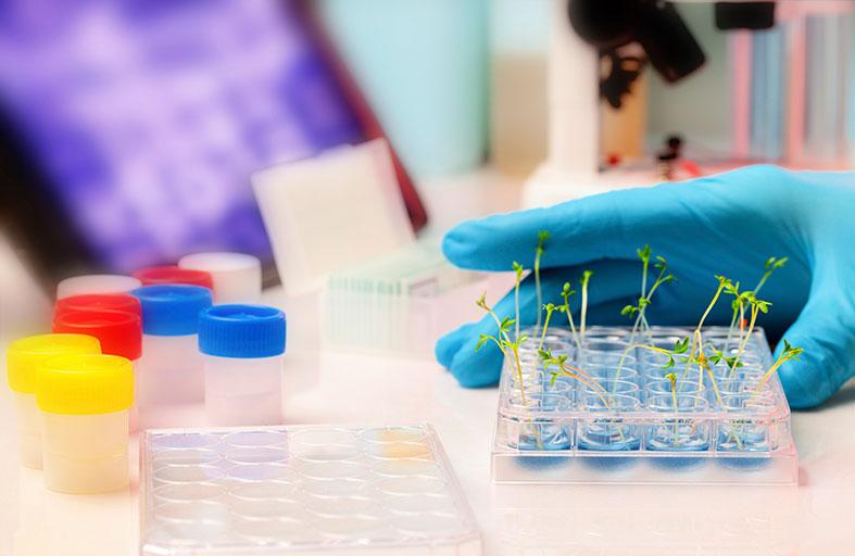 «المنتدى العالمي للابتكارات الزراعية 2014» يشهد تمويل مشاريع تنموية بأكثر من 4 مليارات دولار