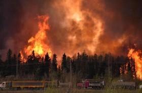 الحرائق تدمر 1400 هكتار بفرنسا
