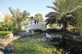 بلدية مدينة العين تبدأ مرحلة التقييم لمسابقة أجمل حديقة منزلية