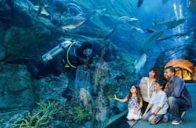 «دبي أكواريوم وحديقة الحيوانات المائية» يحصد لقب أفضل حوض أكواريوم في العالم