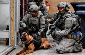 كلبان يعقران جنديا حتى الموت