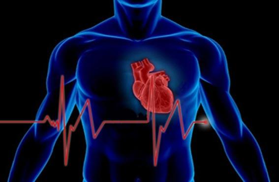 ابتكار جهاز جديد يعمل على رصد اضطرابات القلب